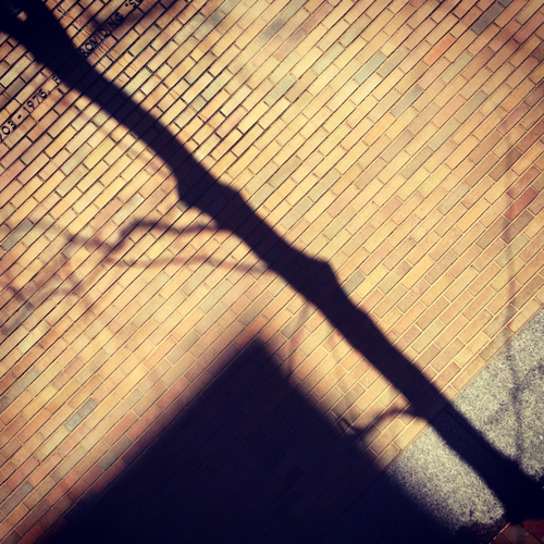 michelleakibecker_shadow_030615